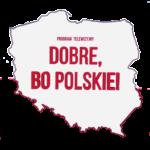 logo-dobre-bo-polskie-z-ktora-wspolpracowal-Artvito